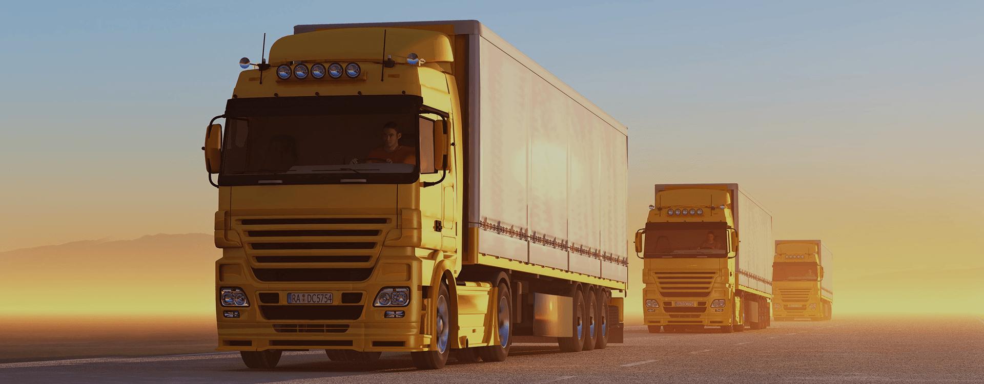 شرکت حمل و نقل بین المللی مایکو